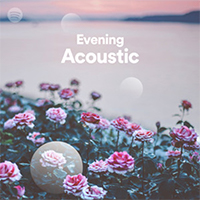 Evening Acoustic Playlist cover